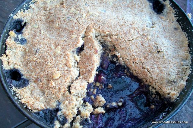 Grain Free Apple Blueberry Skillet Pie | Gluten Free, Low Carb | Wheatless Buns