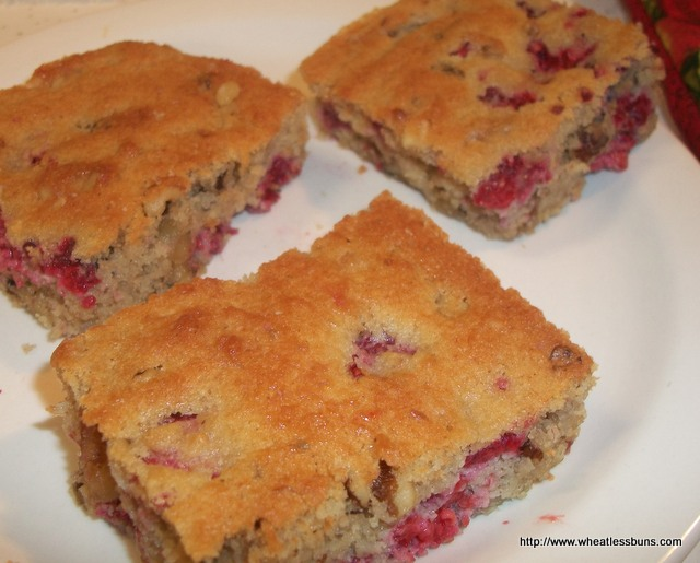Raspberry Walnut Blondies | Gluten Free, Low Carb